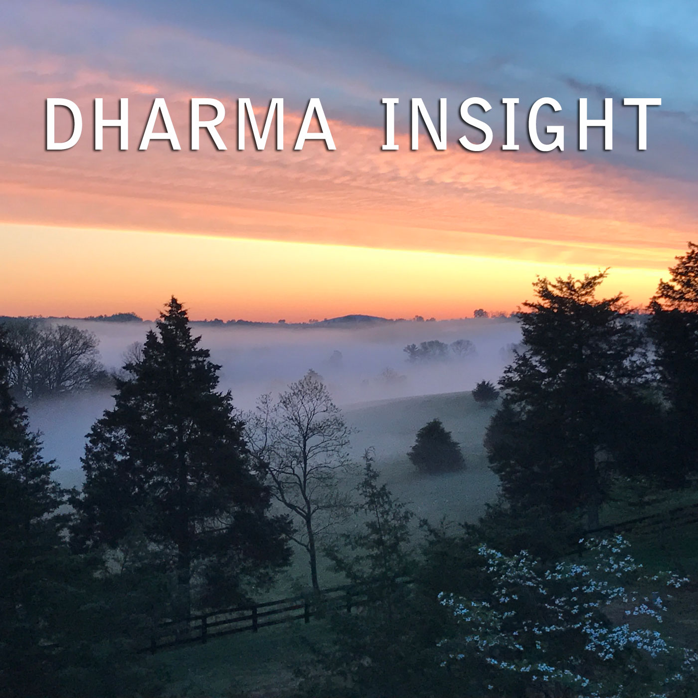 Audio Dharma Insight Meditation Podcast